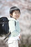 桜の下に立つ小学生男子