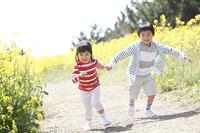 菜の花畑で遊ぶ小学生男女