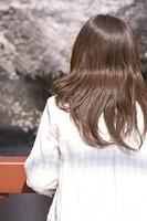 橋の上から桜を見る女性の後姿