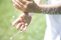 手を洗う女の子の手元