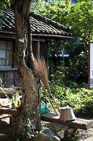 民家の庭先