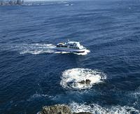 伊豆,石廊崎の遊覧船