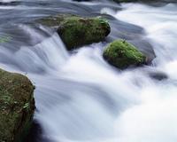 奥入瀬渓谷流