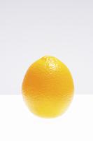白バックにバレンシアオレンジ