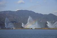 琵琶湖花噴水