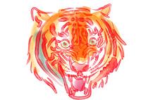 トラの吠える顔の水彩画