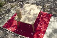 花見用のテーブル