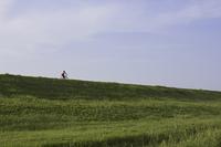 堤防を走る自転車