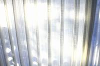 レースのカーテン越しの光