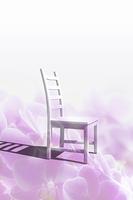 花びらと椅子