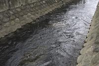 多摩川二ヶ領用水