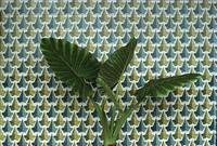 観葉植物とモザイク壁
