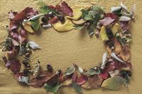 落葉のフレーム