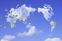 雲の世界地図と新緑の葉