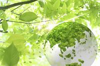 新緑の葉と葉っぱの地球儀