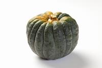 小菊かぼちゃ