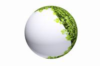 新芽の球体CG