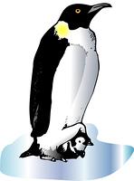 親子ペンギン