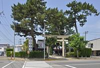 初夏の酒田・八雲神社