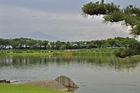 初夏の酒田・白鳥池と鳥海山