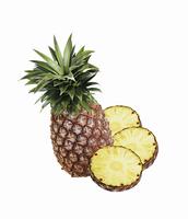 パイナップル本体と横断面3切れ