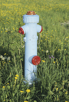草原の水栓