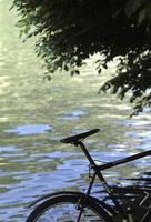 湖畔の自転車
