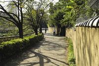神田川沿いの土塀