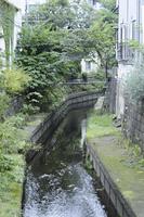 世田谷区瀬田の丸子川