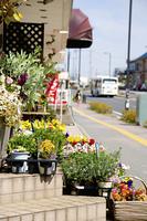 花屋の軒先