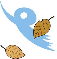 落葉と木枯らし