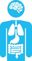 人体と臓器のピクトグラム