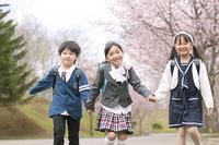桜並木道を歩く小学生