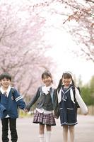 桜並木道で微笑む小学生