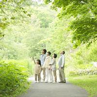 新緑を見上げる3世代家族