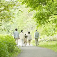 新緑の中を歩く3世代家族の後姿