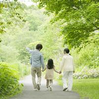 新緑の中で手をつなぐ家族の後姿