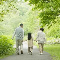 新緑の中で手をつなぐ祖父母と孫の後姿