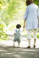 手をつなぎ散歩をする親子の後姿