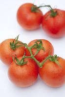 枝付きのミニトマト