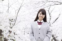 桜の木の前で立つ女子高生