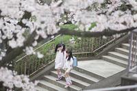 階段を下りる小学生