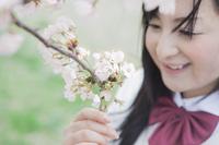 桜を見つめる高校生