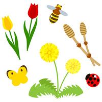 春の生き物