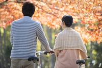 自転車を押すカップルの後姿