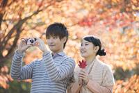 紅葉の写真を撮るカップル