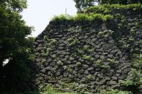金沢城石垣 野面積み