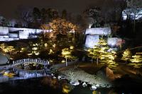 玉泉院丸庭園 ライトアップ