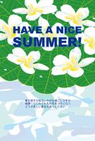 プルメリアの花と葉の暑中見舞い