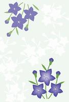 キキョウの花のグリーティングカード